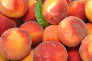 Best Peaches in upstate new york