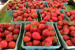Fresh Strawberries new East Greenbush NY