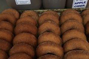 Kristys barn cider donuts