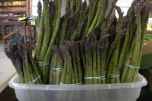 Local-asparagus-new-york