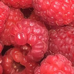 UPick-Red-Raspberries